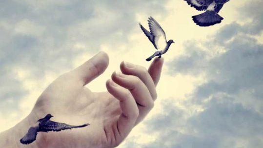 Lasciati andare…